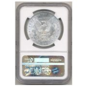 2307206_Morgan_Dollars_pre-21_NGC_MS65_20_pieces_rev