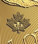 1301002_Canadian_Gold_Maples_one_oz_2018_privy